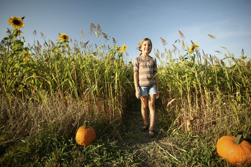girl in a field with pumpkins
